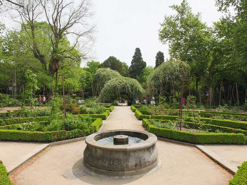 Visitas al Real Jardín Botánico